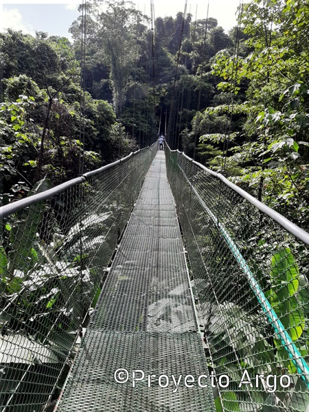 10. Puente colgante Reserva Ecológica La Tirimbina (Costa Rica)